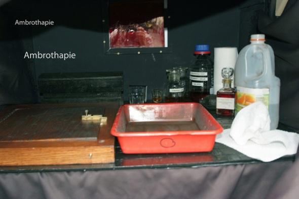 Inside the darkbox. Photo: courtesy of Guido Vandebroek vandebroek-beuls@telenet.be