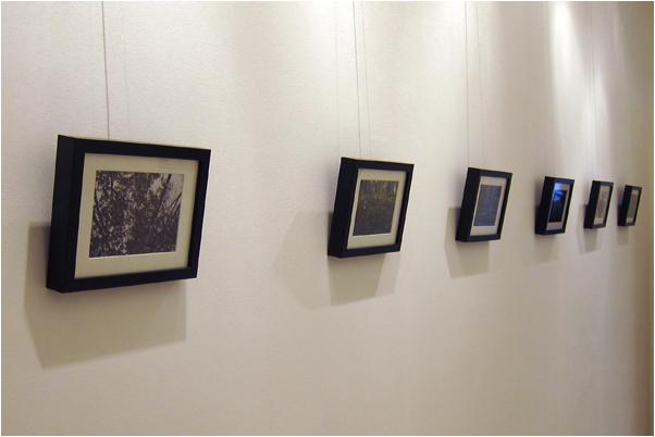 A few of the works by Bert Janssen