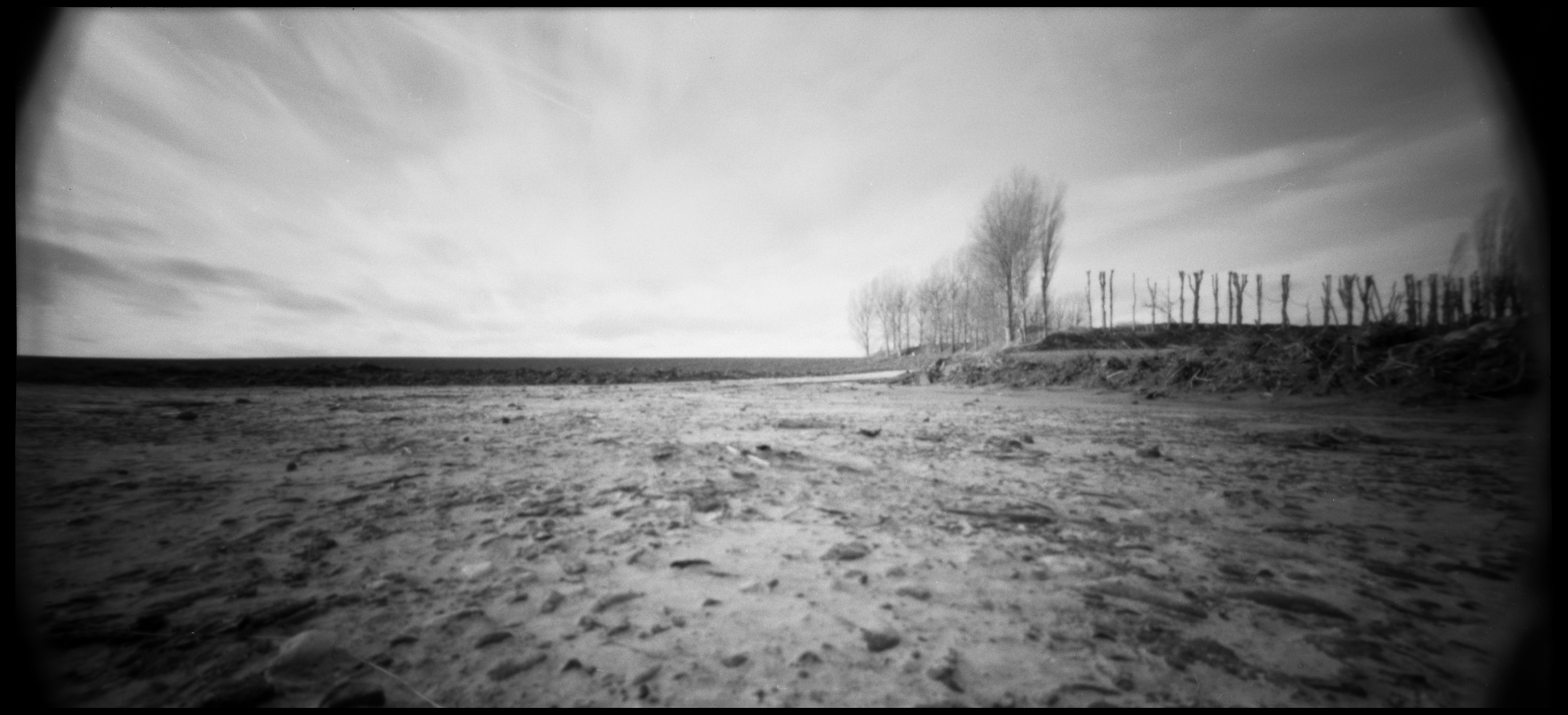 First Holga 120 WPC Results | Photography Contrastique ...